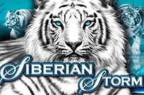 Сибирский Шторм онлайн — играйте в казино